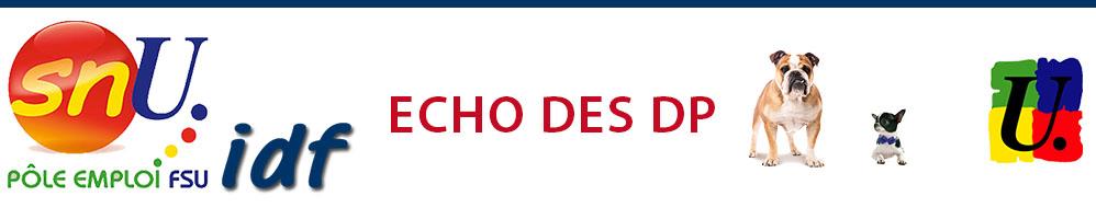 Echo des DP Janvier 2018